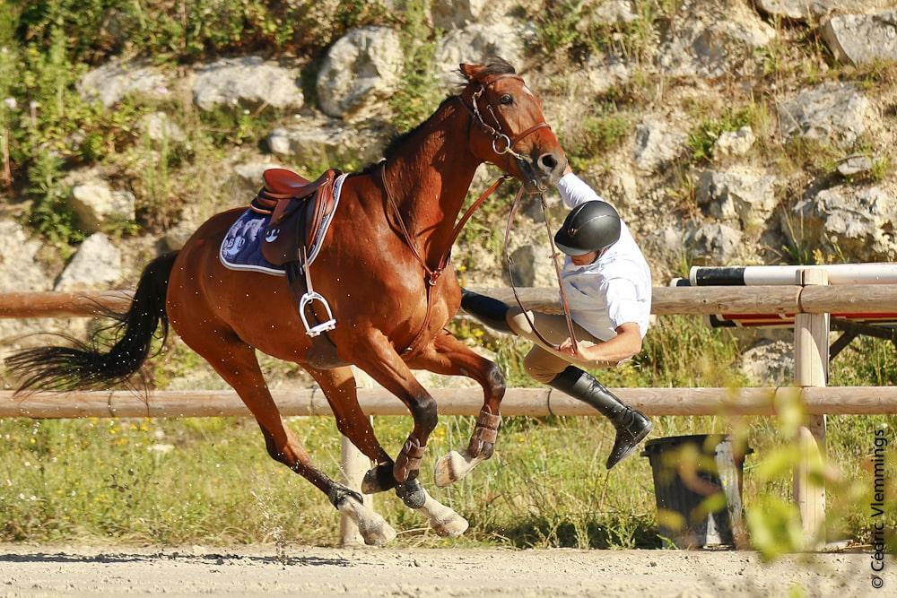 La préparation mentale en équitation : l'estime de soi